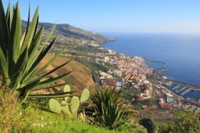 Üppige Vegetation an der Küste von La Palma