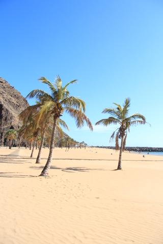 Playa de las Teresitas: Traumstrand auf Teneriffa